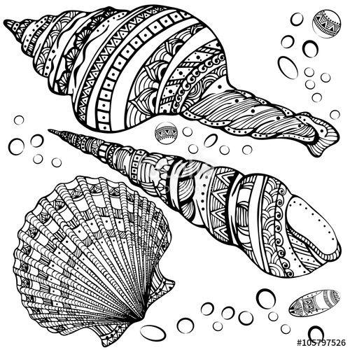 939 best Adult ColouringUnder the Sea FishMermaidsShells