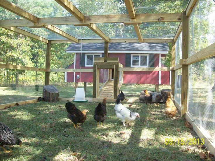 325 Best Chicken Coops Images On Pinterest Raising Chickens