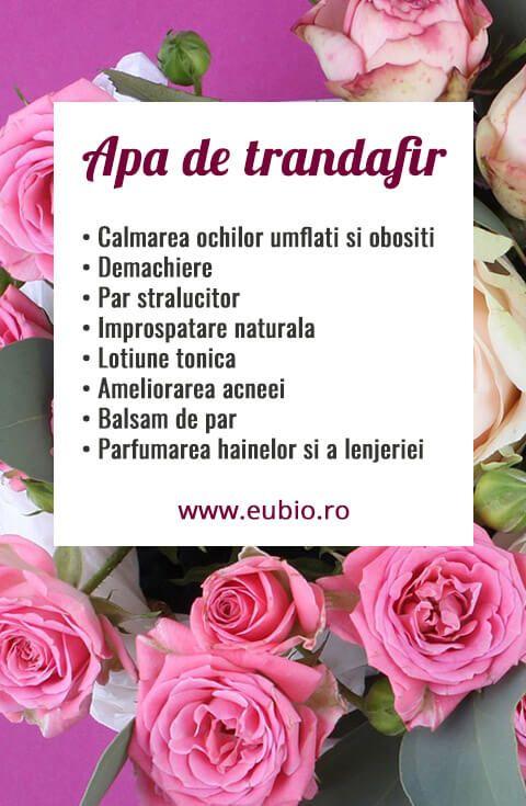Apa de trandafir beneficii si utilizare. . . . #cosmeticenaturale #apaflorala #trandafir #apadetrandafir #eubio #iubescbio #natural #faracompromis