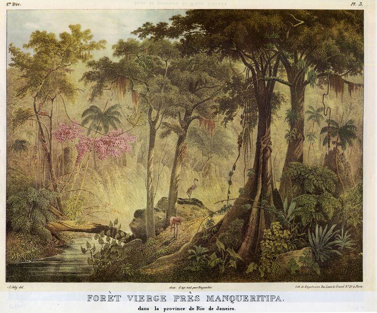 """JOHANN MORITZ RUGENDAS-""""Selva virgen cerca de la Manqueritipa en la provincia de Río de Janeiro"""""""