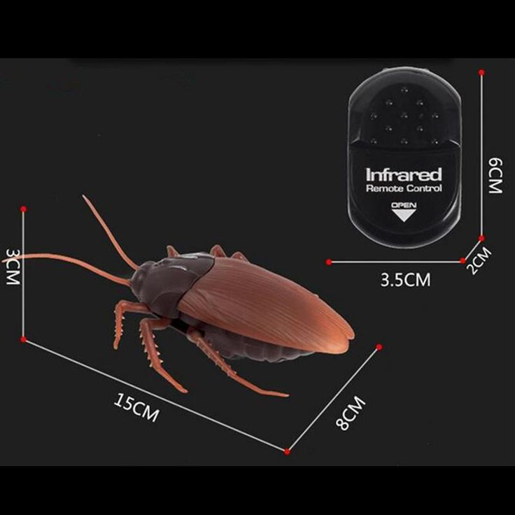 Limited Time Only - New Arrival  The ultimate prank; The lifelike crawling action and high frequency infrared remote control operation makesThe RC Cockroachthe perfect gadget to pull timeless pranks on anyone!Who wouldexpecta remote controlled cockroach?! Includes  1 x RC Cockroach Toy 1 x Remote Controller   *DO NOT put in mouth