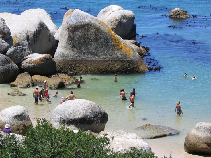 Boulders Beach: By far one of our favourite things to do in Cape Town...swim with the penguins?! Come on now!! Can't be beaten:)