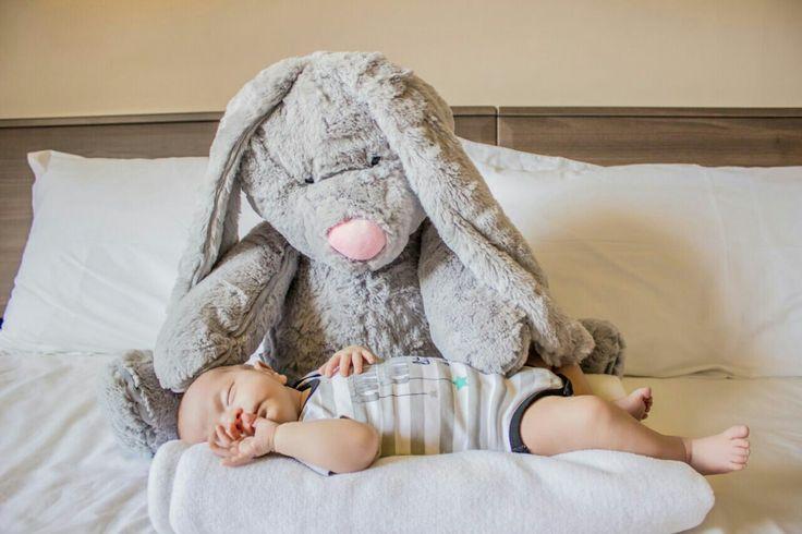 Hi Gorgeous: Baby Scott's long-ear bunny friend 💙