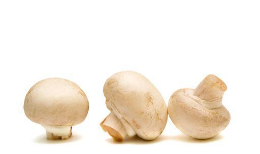 Champignons met kruidenkaas uit de oven zijn super lekkere en budget vriendelijke borrelhapjes. Voor weinig geld kan je de lekkerste hapjes zelf maken. Lees hier het recept voor gevulde champignons met kruidenkaas en kijk ook eens naar de varianten op dit recept, die smaken ook heerlijk!