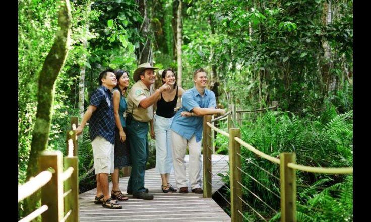 Kuranda Rainforest village tours, Scenic Train & Skyrail Tours - from $115 Call Us 1300 731 620 or visit http://www.fnqapartments.com/tour-tropical-horizons-kuranda/area-cairns/ #kuranda #rainforest #cairns #CairnsTour