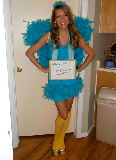 121 best halloween ideas images on pinterest costume ideas now you can with these great homemade bird costumes solutioingenieria Gallery
