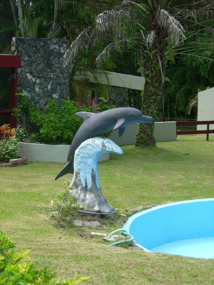 17 Best Images About Pool On Pinterest Lawn Ornaments