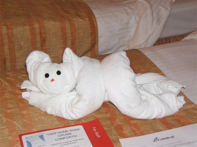 "towel animal in our cabin .Every night there was a different one.Love Carnival cruise   ""The Miracle cruise ship"""