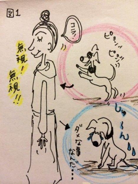 しつけ ジャンプジャンプを躾ける方法【犬の育て方 vol.6】