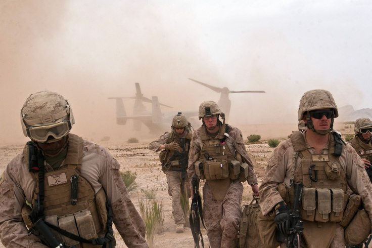 Marines in Combat | Marines with Combat Logistics Battalion 8 (CLB-8), 2nd Marine ...