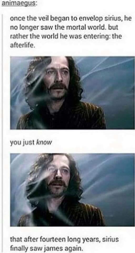 Tears. I have seen the HP movies so many times, so I know all about who does, but I ALWAYS CRY WHEN SIRIUS DIES.