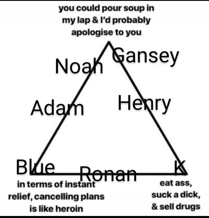 The Raven Cycle In 2021 List Of Memes Fanboys Raven