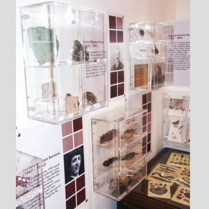Display Cabinets & Cases : Museum Displays