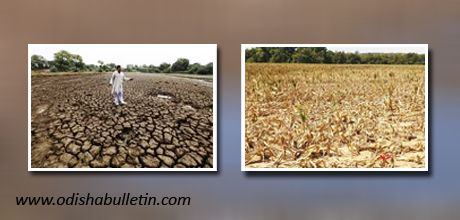 India  set's its  contingency  plan  for poor  monsoon    Odishabulletin