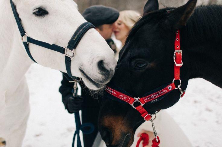 #зима #okwedding #wedding #свадьба #координатор #организатор #распорядитель