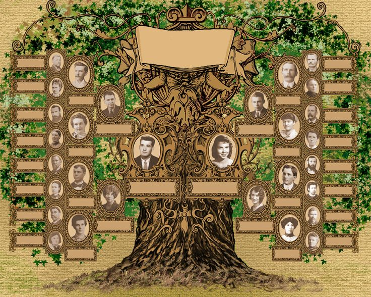 family tree template set on a green leaf background family photos complete the family tree