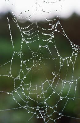 How to Make a Fake Spider Web using hot glue guns