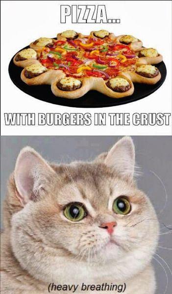heavy breathing cat pizza