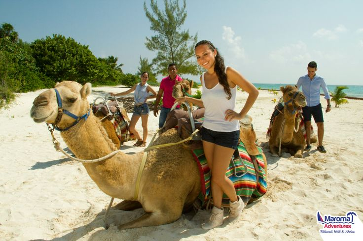 If you are an exotic traveler, come and discover the experience of riding a #camel through the Riviera Maya enjoying the amazing view #YouHaveToLiveIt goo.gl/fdPceg