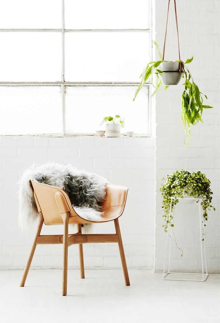 Ivy Muse HOMEBODY Collection; 'Foundation' plant stand in White with Powder White 'Homebody Pot' and 'Saturn Hanger' in Black with Eskimo Grey 'Homebody Pot'