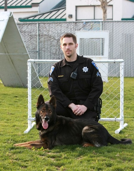 """Beautiful K9... Davis PD K9 Hurricane and Officer Hatfield. """"Cane"""" is a 7 year old GSD who is certified in patrol, building searches, narcotics detection and evidence recovery. Love our service and working dogs!"""
