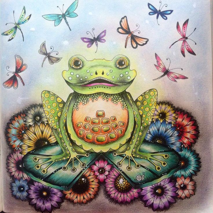 Frog Enchanted Forest Sapo Floresta Encantada Johanna Basford BasfordColoring BooksAdult