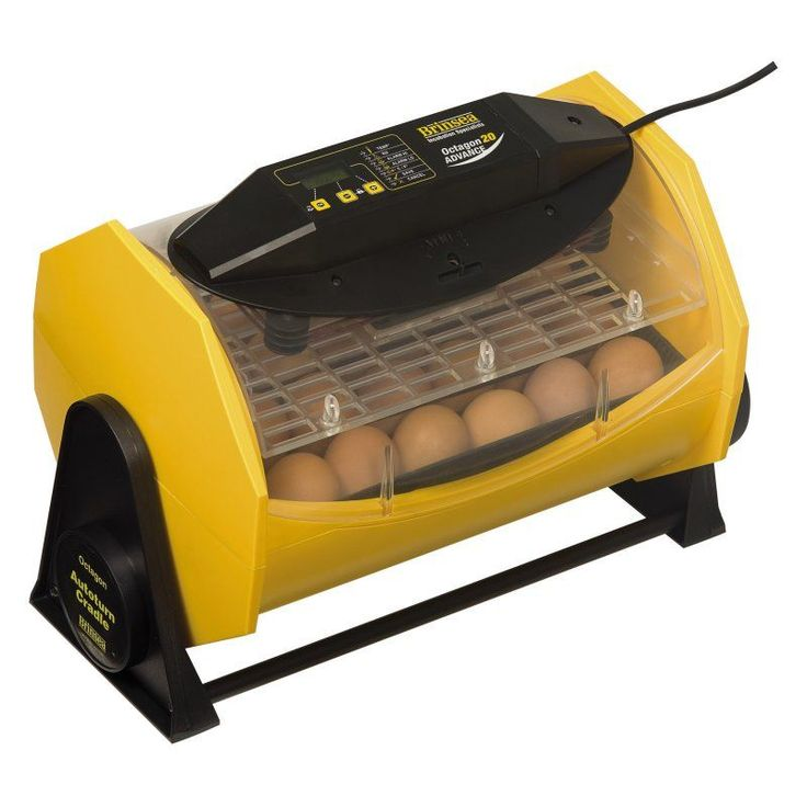 Octagon 20 Advance Automatic Egg Incubator - USAD22C