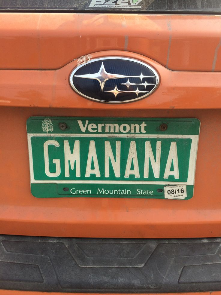 Grand Manan plate from Vermont