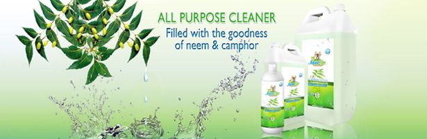 Web Store for Non-toxic Cleaning & Beauty Essentials