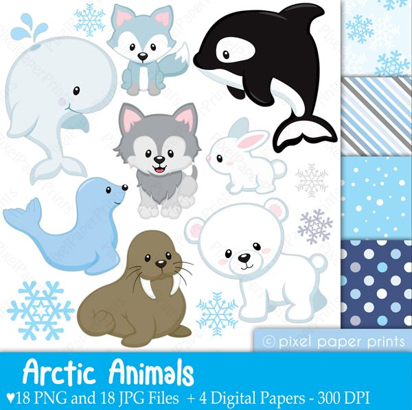 Arctic animals Clipart & Digital Papers - great for invitations, newsletters, educational use, crafts and more.