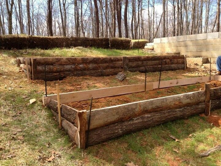 Raised garden beds on a hill. Looks like they bought slab wood long enough to fit the beds.