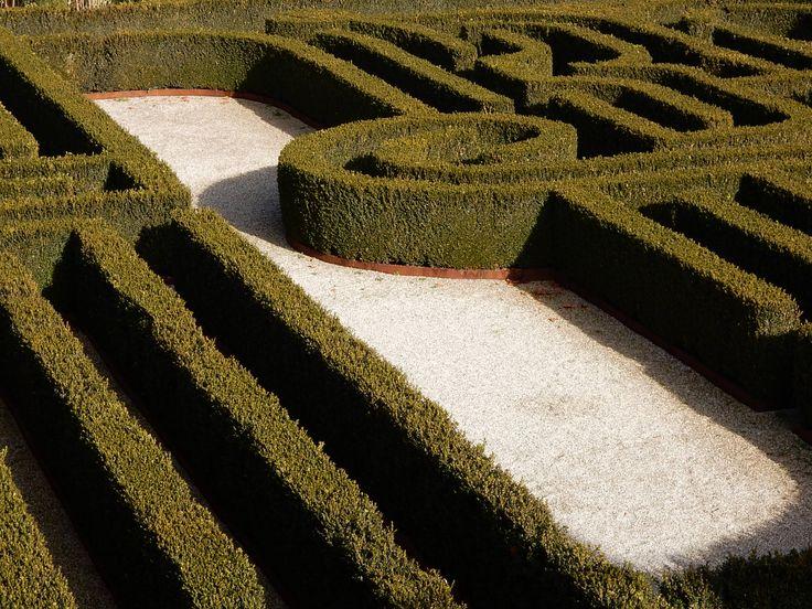 San Giorgio 18 (Fondazione Cini - Biblioteca Labirinto Borges)