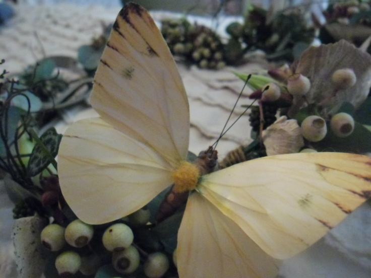 ...and a flutterby butterfly :)