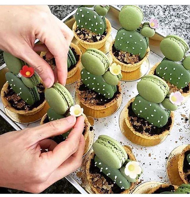 Que coisa mais fofa esses cactos de #macarons . Pic via @atelierfestah…