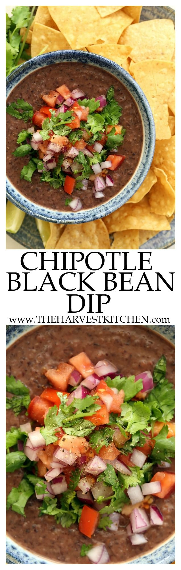 This Chipotle Black Bean Dip recipe couldn't be easier. Just toss the ingredients in a food processor and whir away! Black beans make this dip extra healthy and the chipotle makes it extra flavorful. Serve with tortilla chips (preferably baked), gluten-free crackers or crudités (veggies). | vegetarian dip recipes | | vegetarian recipes | | clean eating | | healthy recipes |