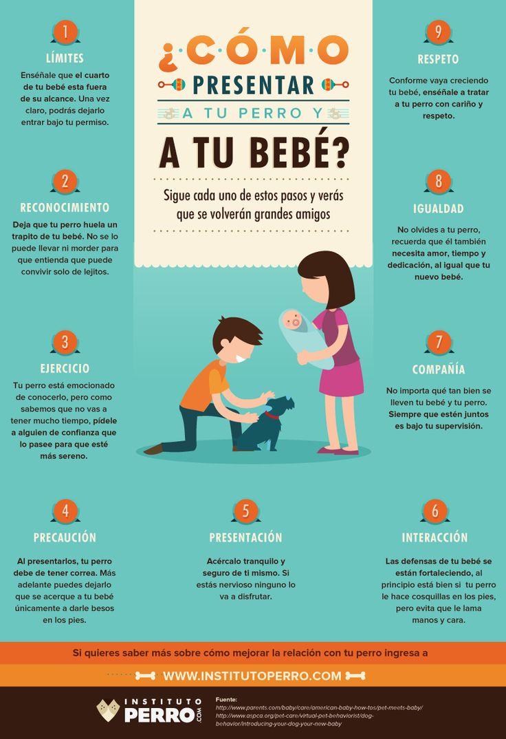 ¡Si tienes #mascota en casa no te pierdas estos prácticos #consejos! ;) #padres #mamas #papas #familias #bebes #hijos