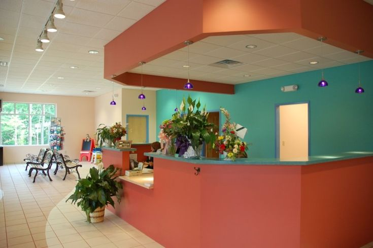 Dogwood veterinary hospital pet resort pet resort