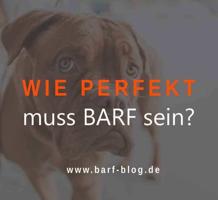 Wie perfekt muss #BARF zusammen gestellt sein? Wie akribisch müssen Bedarfswerte eingehalten werden? Und was ist überhaupt das perfekte #Futter?  http://barf-blog.de/wie-perfekt-muss-futter-sein/