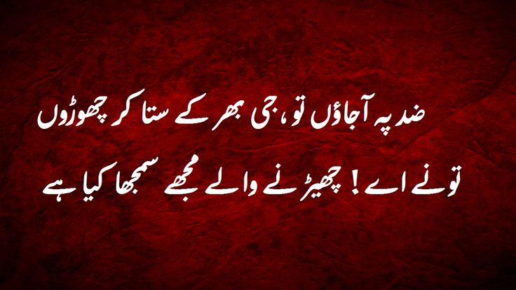 Zid peh a jaun toh jee bhar ke sata kar chorun... #urdu #poetry #urdupoetry #urdushayari #urduquotes #urduadab #urduposts  #pakistan #quotes #quoteoftheday #bestquotes  #arabic #urdulovers #pakistani اردوشاعری #اقوال #زریں #اردو #پاکستان  #اردو_ادب #شاعری # #dard #aqal #dosti #dost #muhabbet #ishq #love #attitude  #emotional #trust #truelove #deep  #lovelyrics #sadwords #urdulove #sadquotes #lovequotes  #poetry #love #shayari #urduquotes #urduadab #quotes #urdulovers #shair #urdushair…