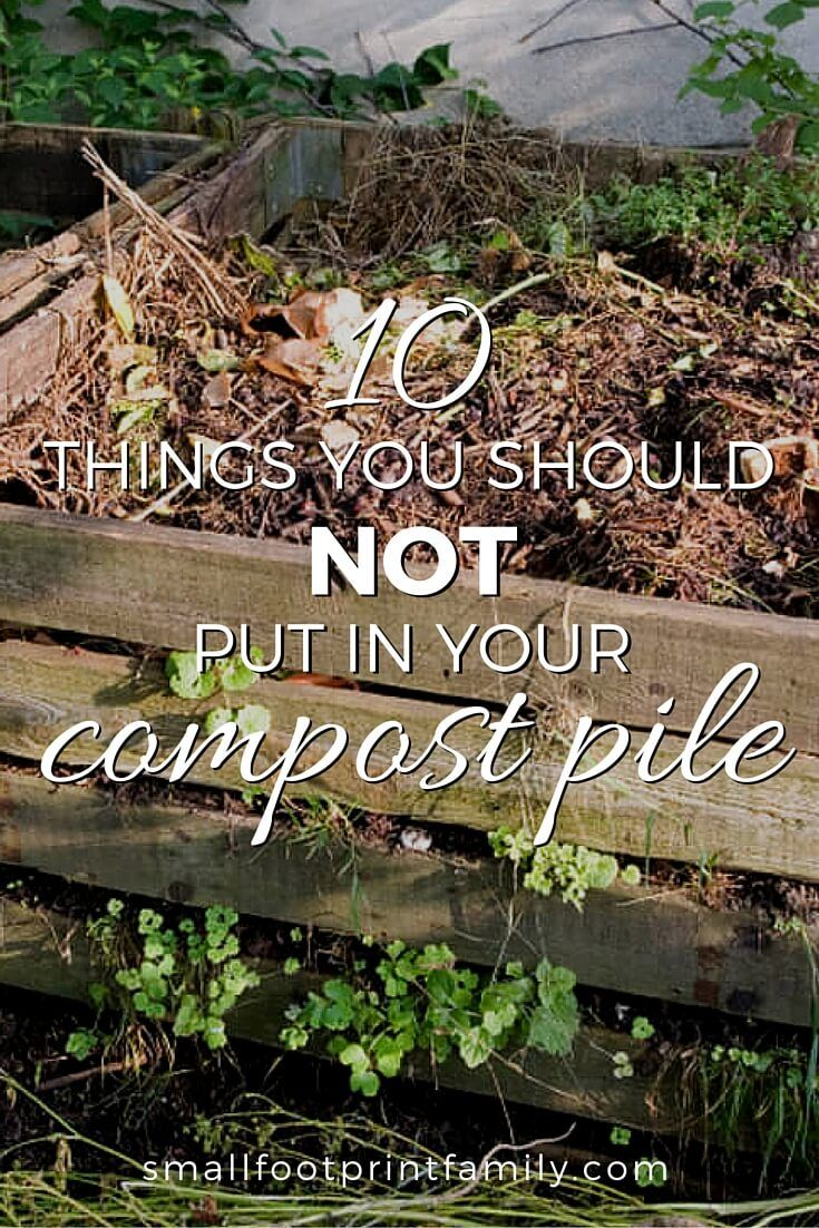 10 Things You Should Not Put In A Compost Pile Compost
