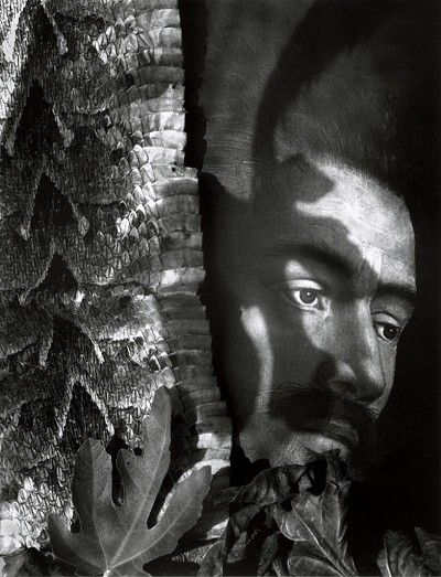 PAUL KILSBY - ADAM