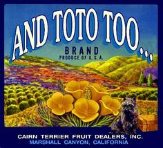 The Marshall Canyon Fruit Crate Label Art Print Collection