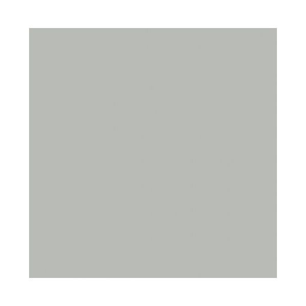 Coventry Gray By Benjamin Moore For The Home Pinterest Coventry Gray Coventry And