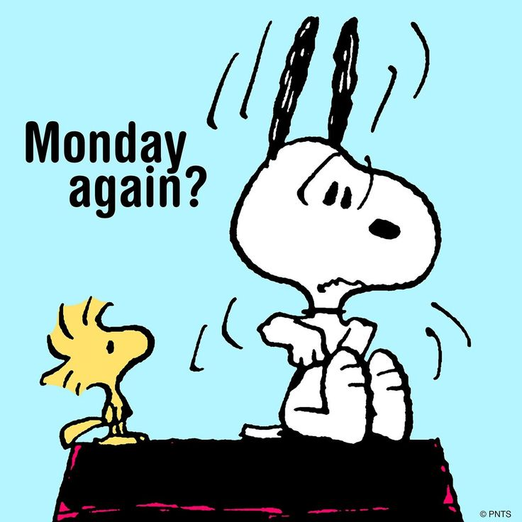 Typical Cartoon Snoopy Work Week