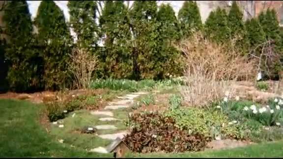 Mejores 15 Im Genes De Gardening En Pinterest Hortaliza