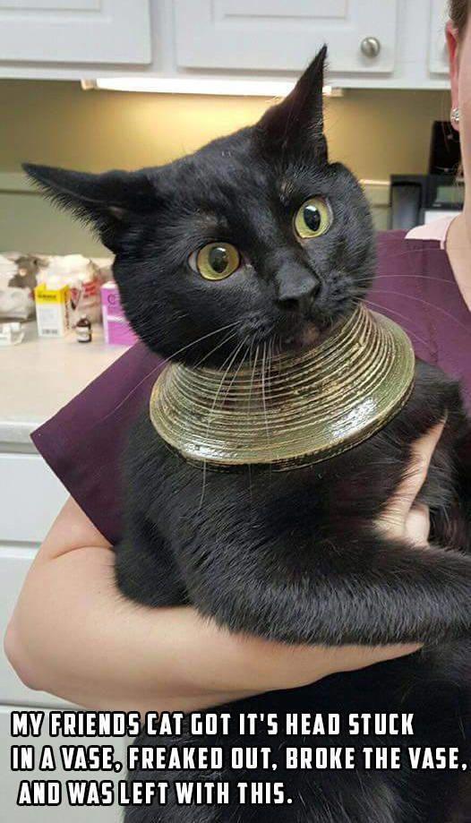 Wollte nur eine Halskette
