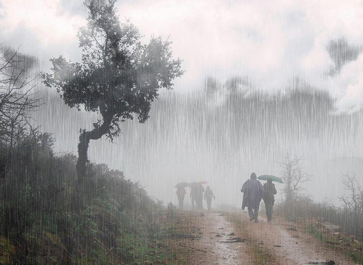 Pioggia fotografia di Stefania Loriga