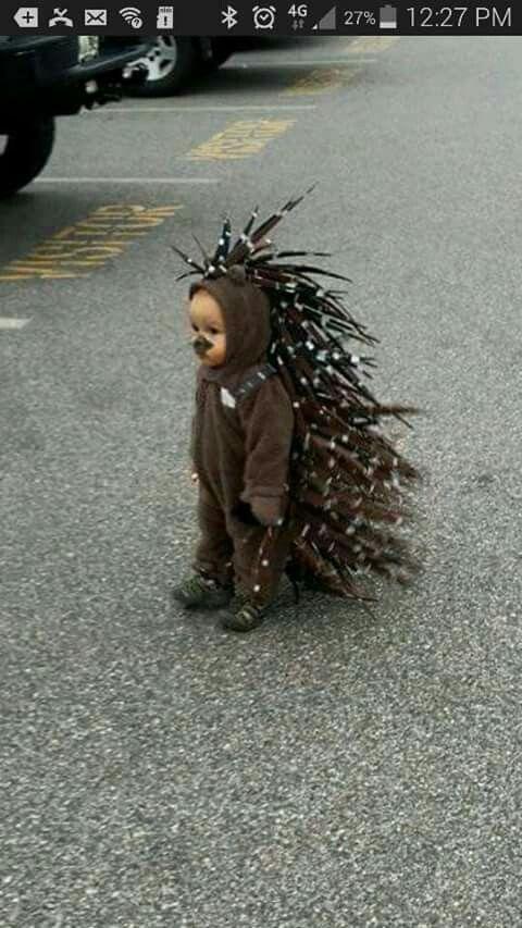 Porcupine costume....ADORABLE!!