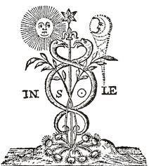 Risultati immagini per simboli alchemici trasformazion