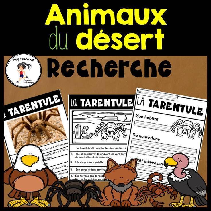 French Desert Animal Research Recherche Animaux Du Desert In 2020 Desert Animals French Deserts Elementary Schools